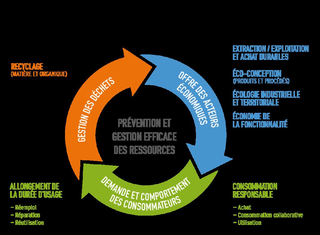 Schéma présentant l'économie circulaire